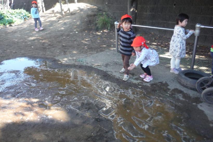 園庭に生まれた大河