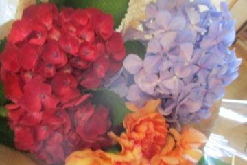 花の日礼拝をささげました。